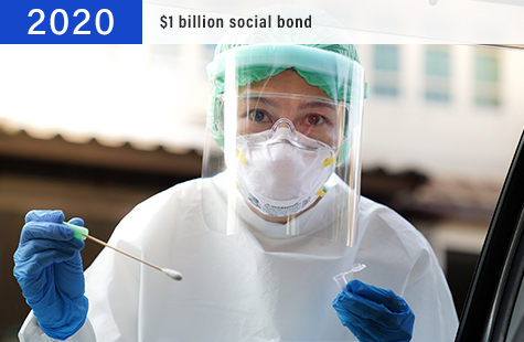 2020 $1 billion social bond