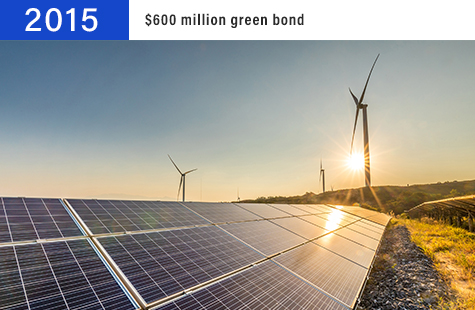 2015 $600 million green bond