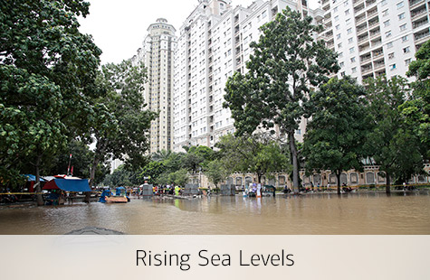 Rising sea level